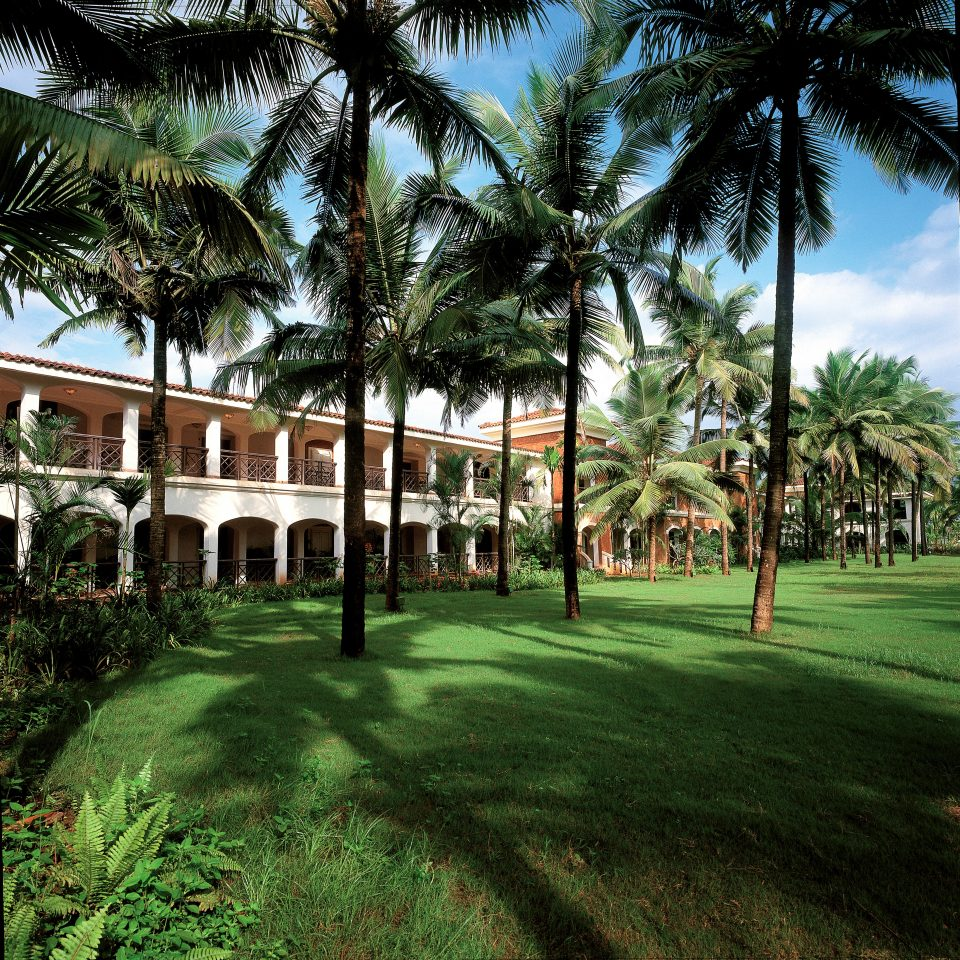 Grounds tree grass sky plant structure Resort botany arecales sport venue palm palm family lawn plantation mansion lined lush