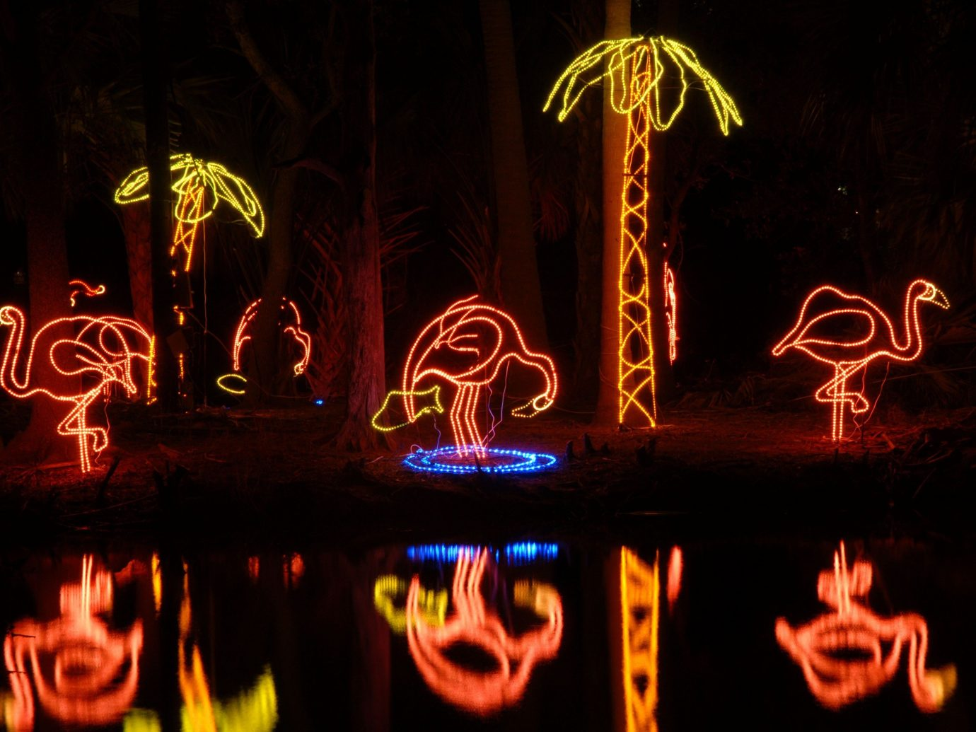 Offbeat lit light night darkness Nature lighting christmas lights neon sign dark Fireplace