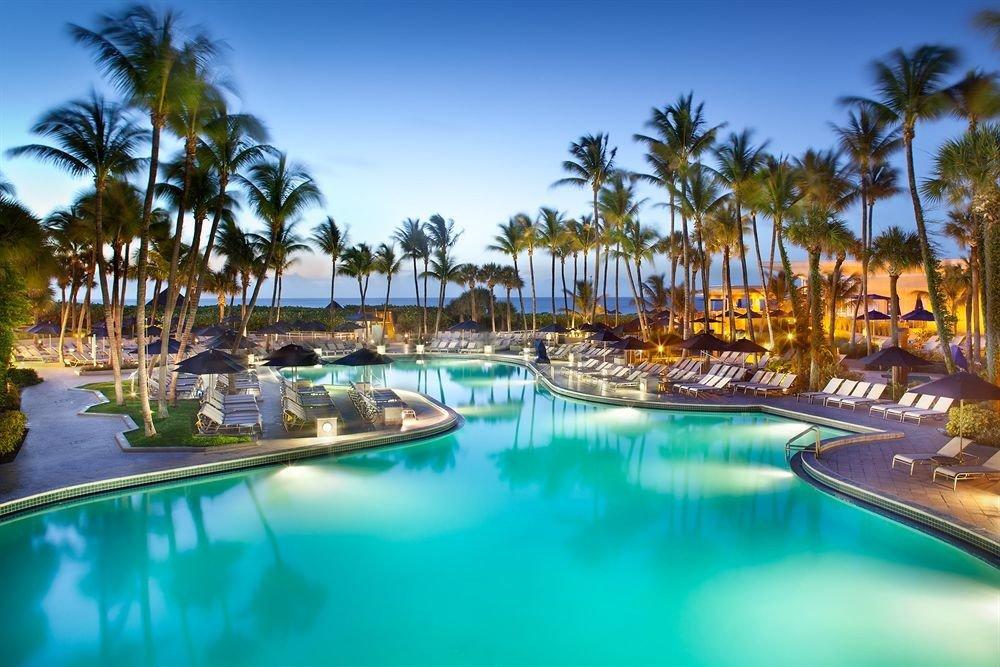 sky water tree palm swimming pool Resort leisure caribbean Pool lined resort town Lagoon marina condominium Harbor colorful