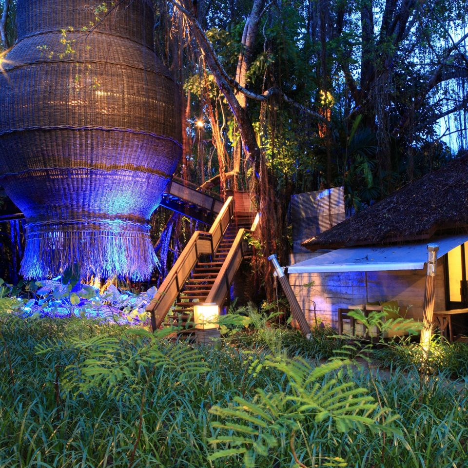 Hip Lounge Luxury Modern Pool tree grass building night Resort Jungle