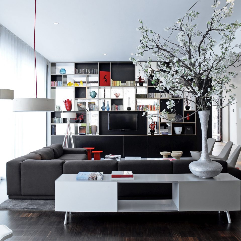 Hip Lounge Luxury Modern living room home loft