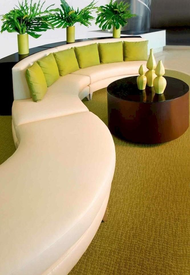 Hip Lounge Luxury Modern green yellow toilet seat living room flooring plant