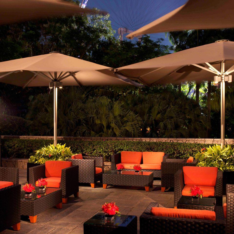 Hip Lounge Luxury Modern tree umbrella function hall restaurant lawn plant set shade Resort