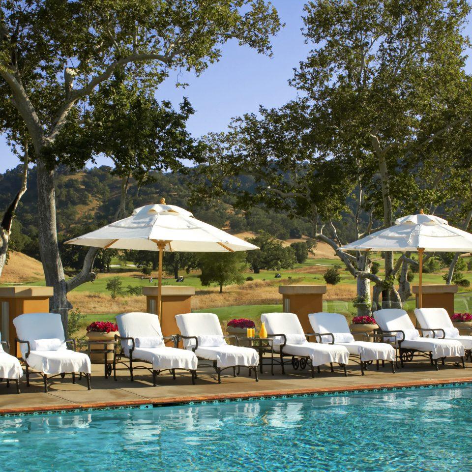 Hip Lounge Luxury Pool tree water leisure swimming pool Resort swimming