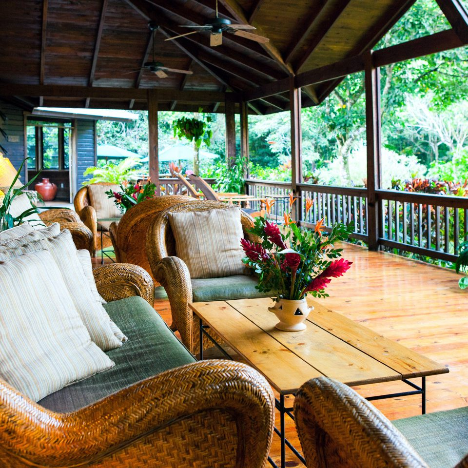 Hip Lounge Luxury Tropical sofa Resort house home backyard cottage outdoor structure living room porch