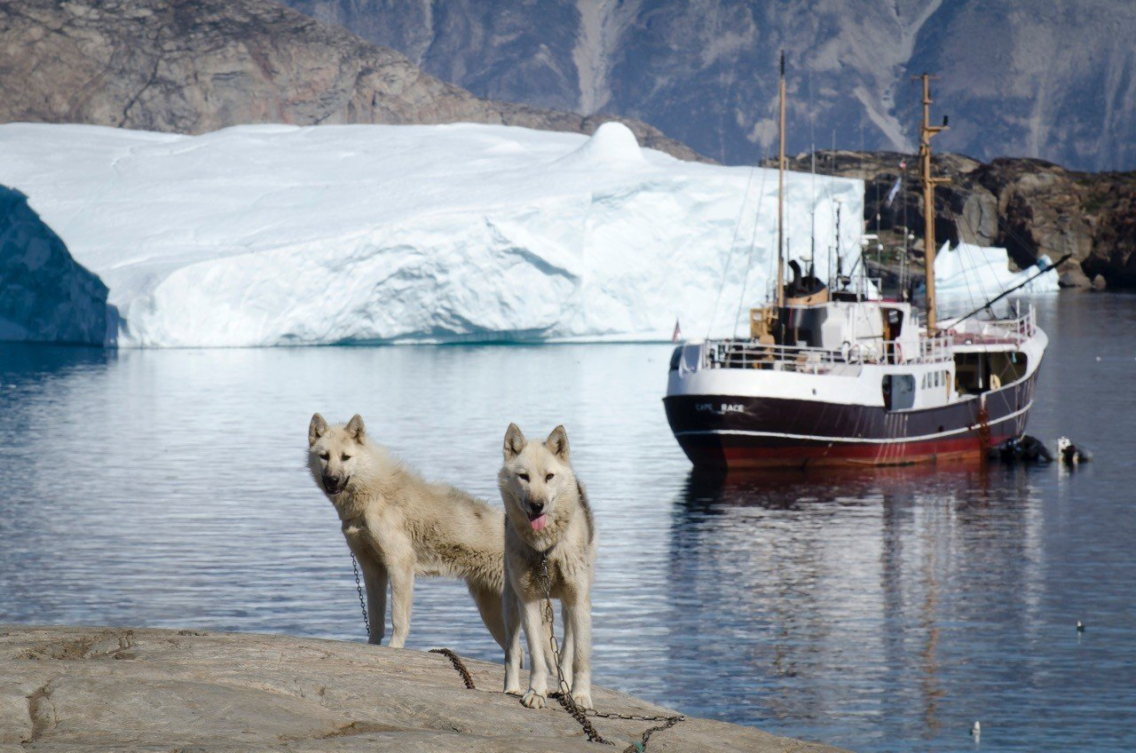 Luxury Travel Trip Ideas water outdoor Dog Boat snow mountain arctic vehicle Sea ice arctic ocean