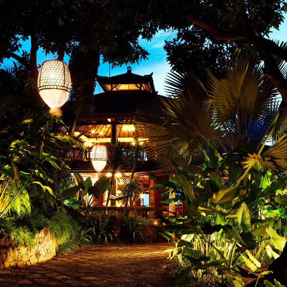Honeymoon Island Luxury Villa tree night light plant tropics arecales Jungle evening Resort sunlight flower palm