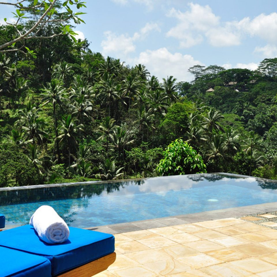 Honeymoon Jungle Luxury Pool tree sky swimming pool property leisure Villa backyard Resort blue