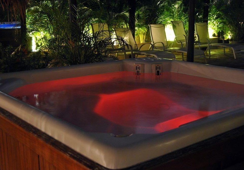 tree swimming pool jacuzzi Hot tub backyard