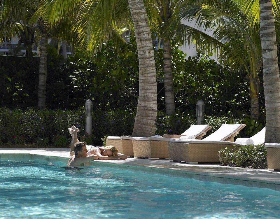 Hot tub/Jacuzzi Lounge Luxury Modern Pool tree leisure swimming pool Resort Water park arecales backyard Villa swimming
