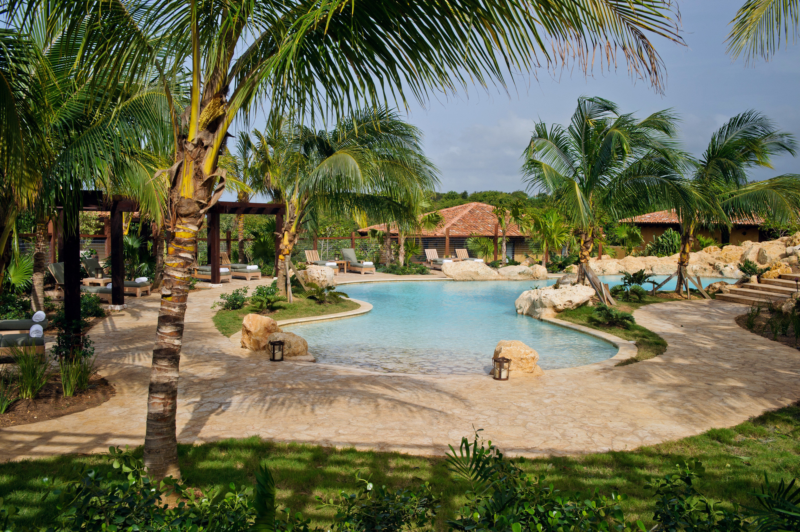 Hotels Lounge Luxury Pool Scenic views tree palm water plant leisure swimming pool Resort arecales tropics palm family Jungle lined shade shore surrounded