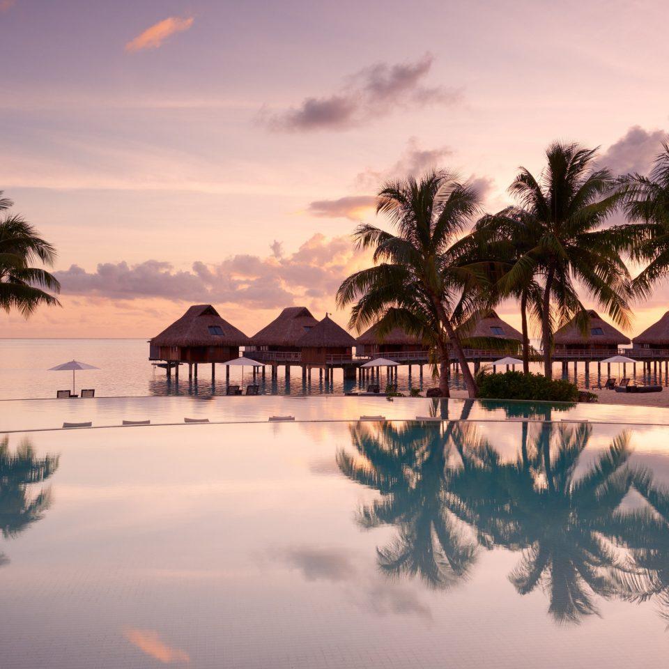 Hotels tree sky water tropics plant palm palm tree Sunset arecales Resort Sea evening caribbean morning horizon dusk Ocean sunrise setting calm computer wallpaper dawn cloud leisure Lagoon shore