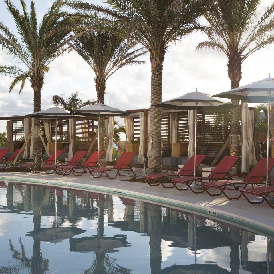 Hotels tree sky Resort arecales waterway walkway palm