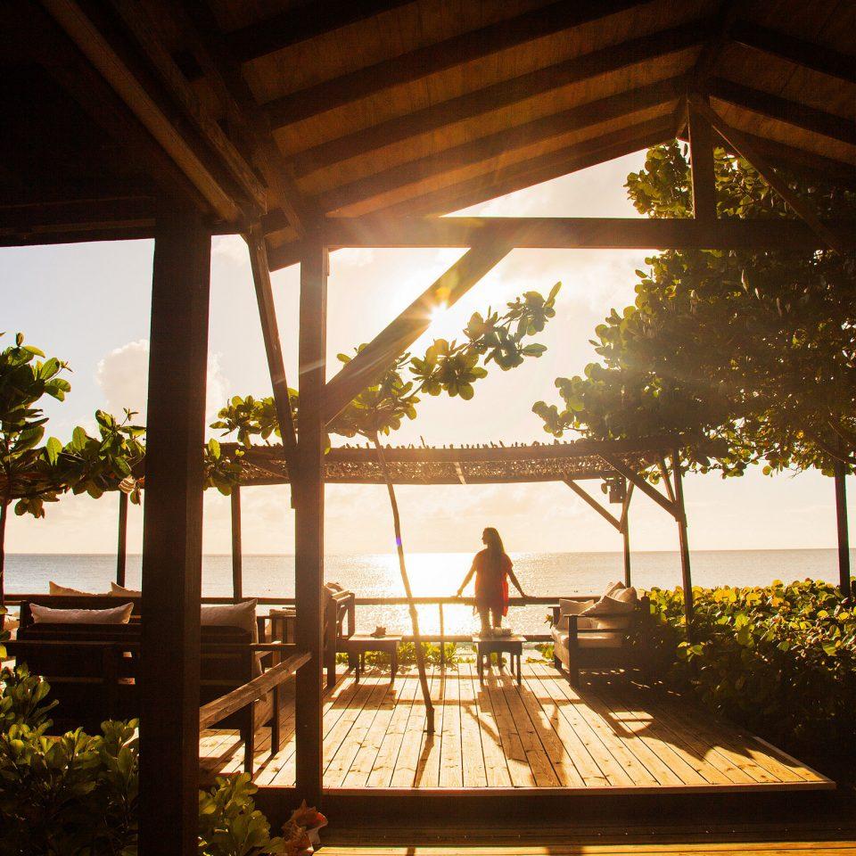 Hotels Trip Ideas tree building Resort house home restaurant sunlight Villa flower