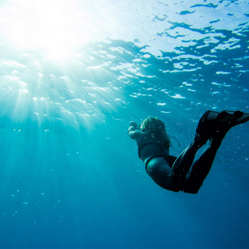 Hotels Travel Tips Trip Ideas water water sport marine biology underwater Sport underwater diving sports diving freediving Scuba Diving outdoor recreation recreation swimming day ocean floor
