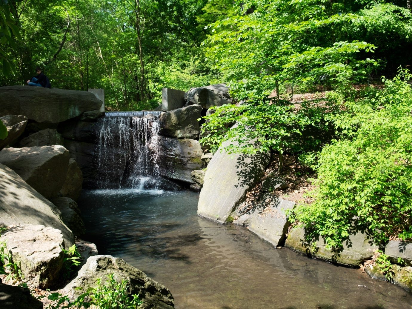 Travel Tips tree outdoor rock Nature Waterfall watercourse body of water water River green stream botany water feature Garden Forest woodland flower Jungle rainforest waterway valley pond stone surrounded