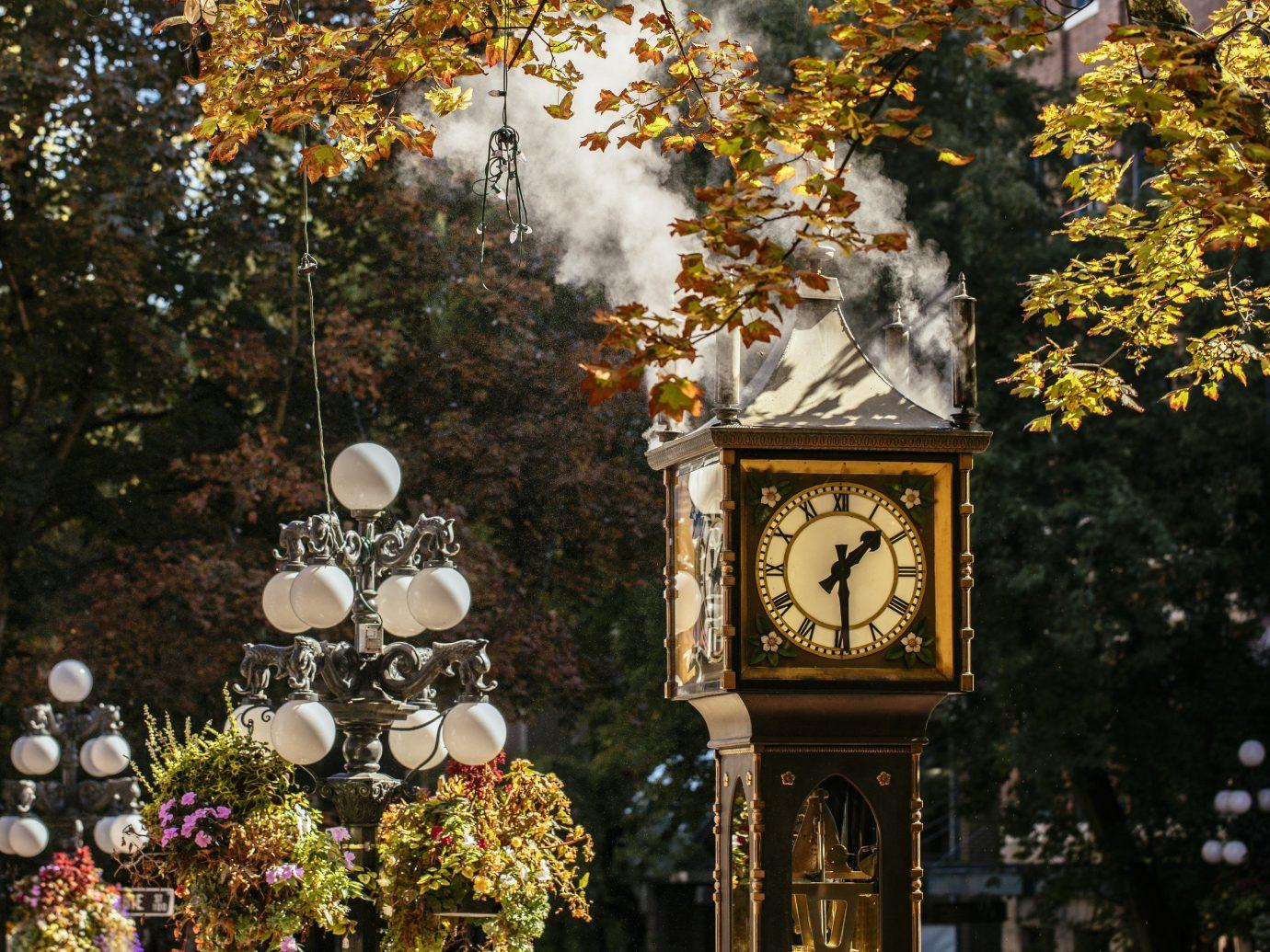 Trip Ideas clock tree outdoor season autumn leaf flower spring shrine surrounded