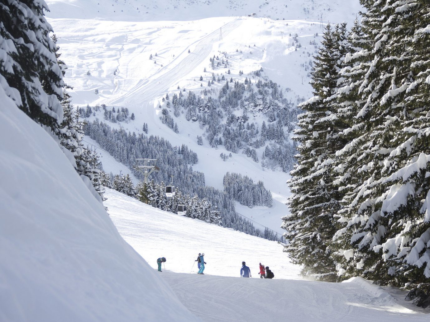 alpine skiing East Coast USA Hotels Trip Ideas Weekend Getaways outdoor snow tree Nature mountain Winter piste weather geological phenomenon people mountain range Ski slope footwear ski equipment skiing season winter sport Resort sports ski slope ski mountaineering ski touring nordic skiing alps sports equipment ice