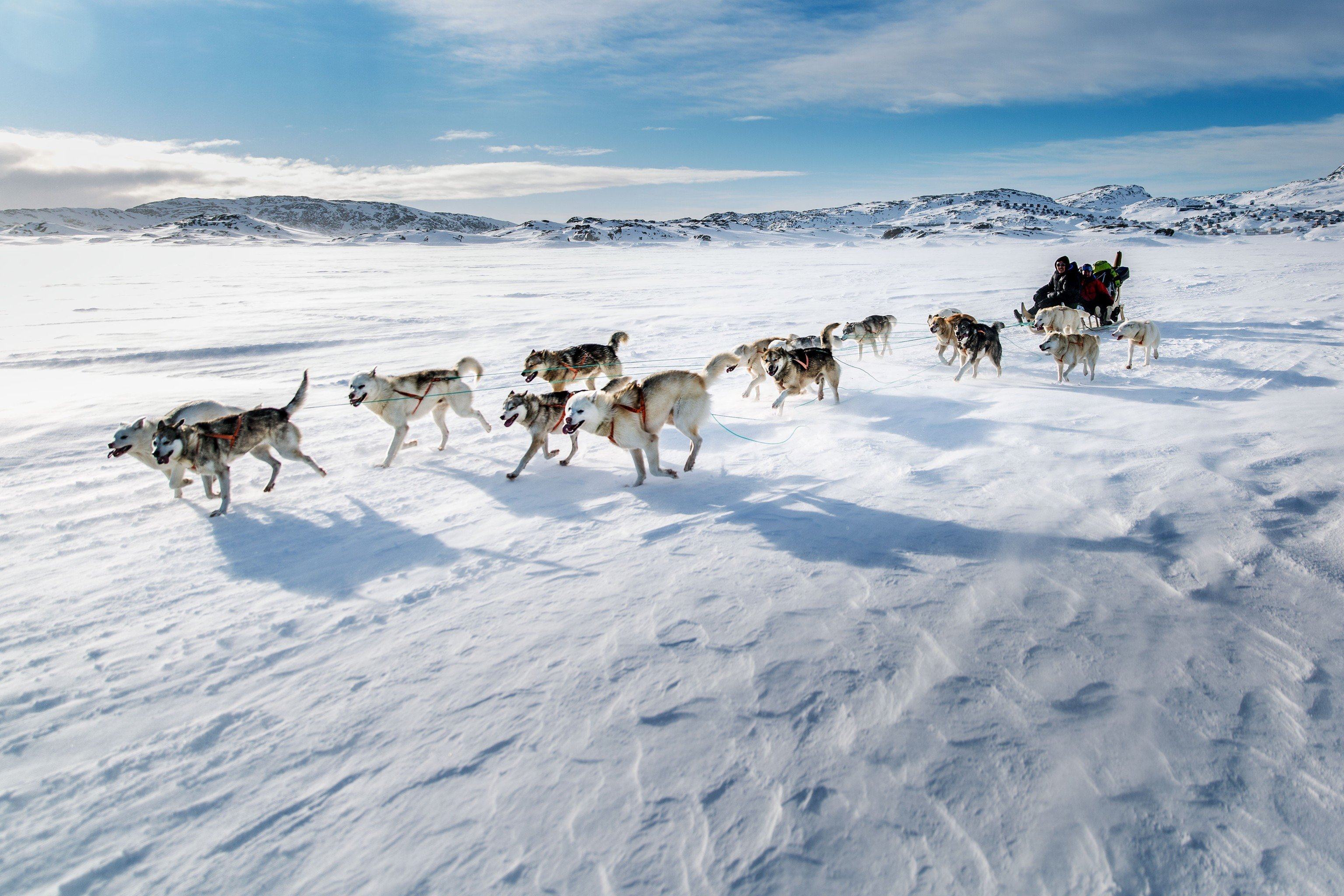 Trip Ideas sky outdoor snow mushing transport dog sled vehicle Winter Dog weather sled season arctic sled dog racing group dog like mammal sled dog