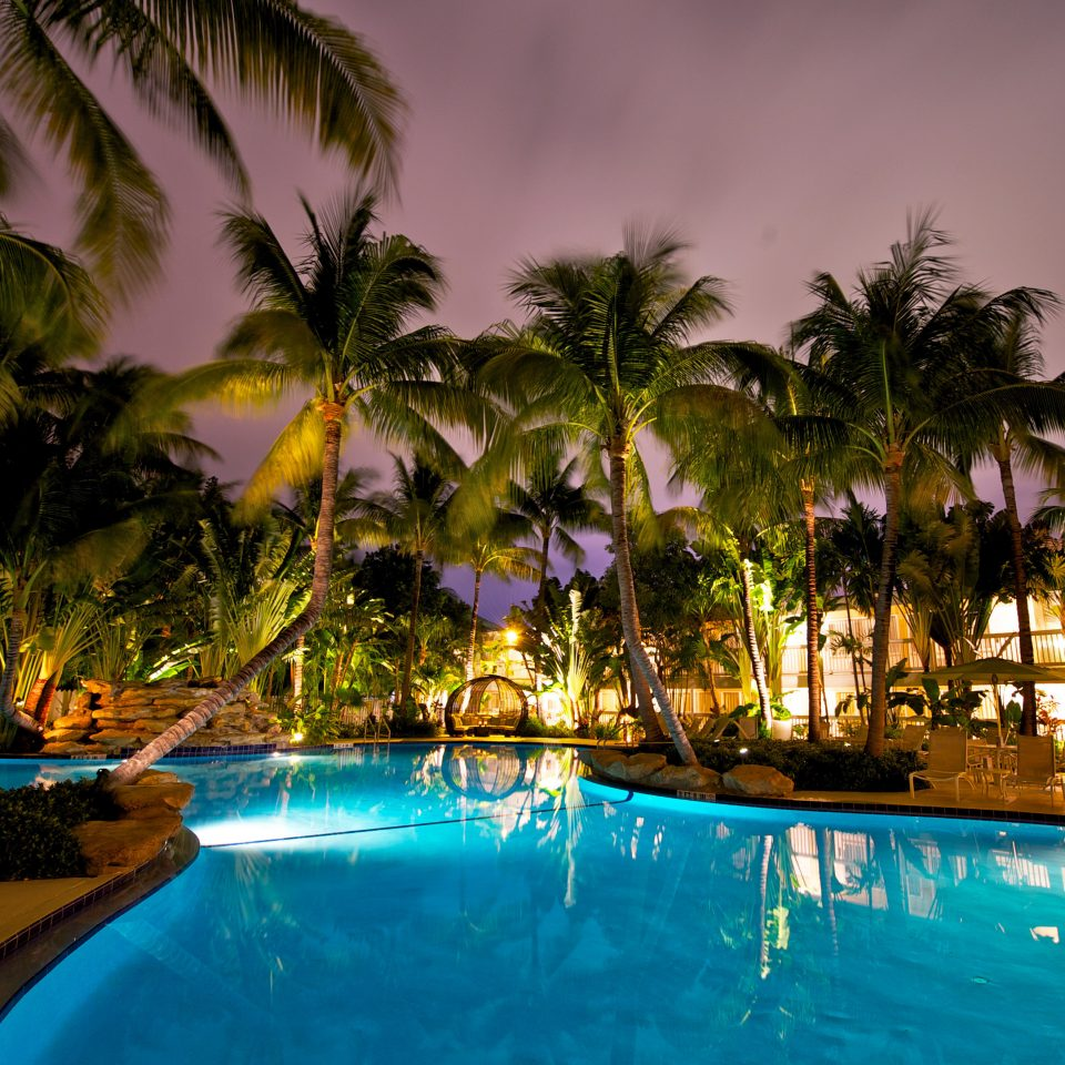 Inn Lounge Patio Pool Terrace tree palm water Resort swimming pool night caribbean arecales tropics Lagoon plant lined swimming