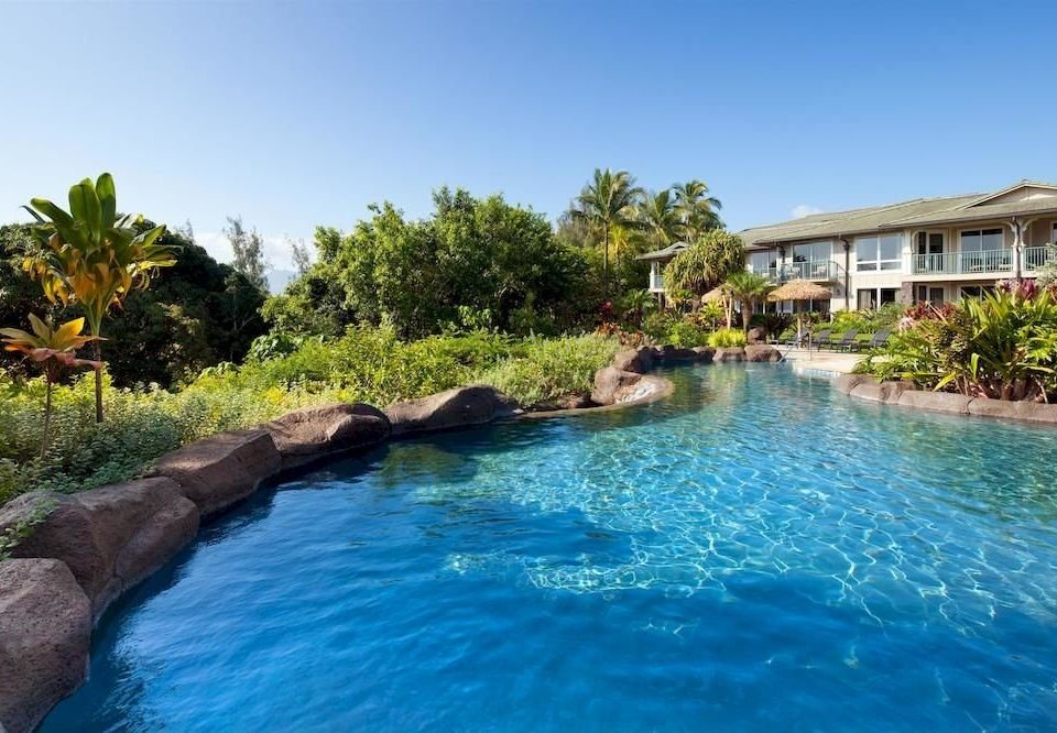 water sky tree Pool swimming pool property Nature Resort swimming house resort town Lagoon Villa pond surrounded Island