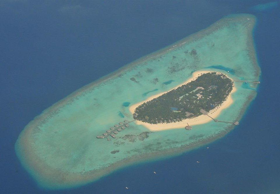 reef marine biology Ocean Nature biology Sea atoll fish Island underwater stingray wave