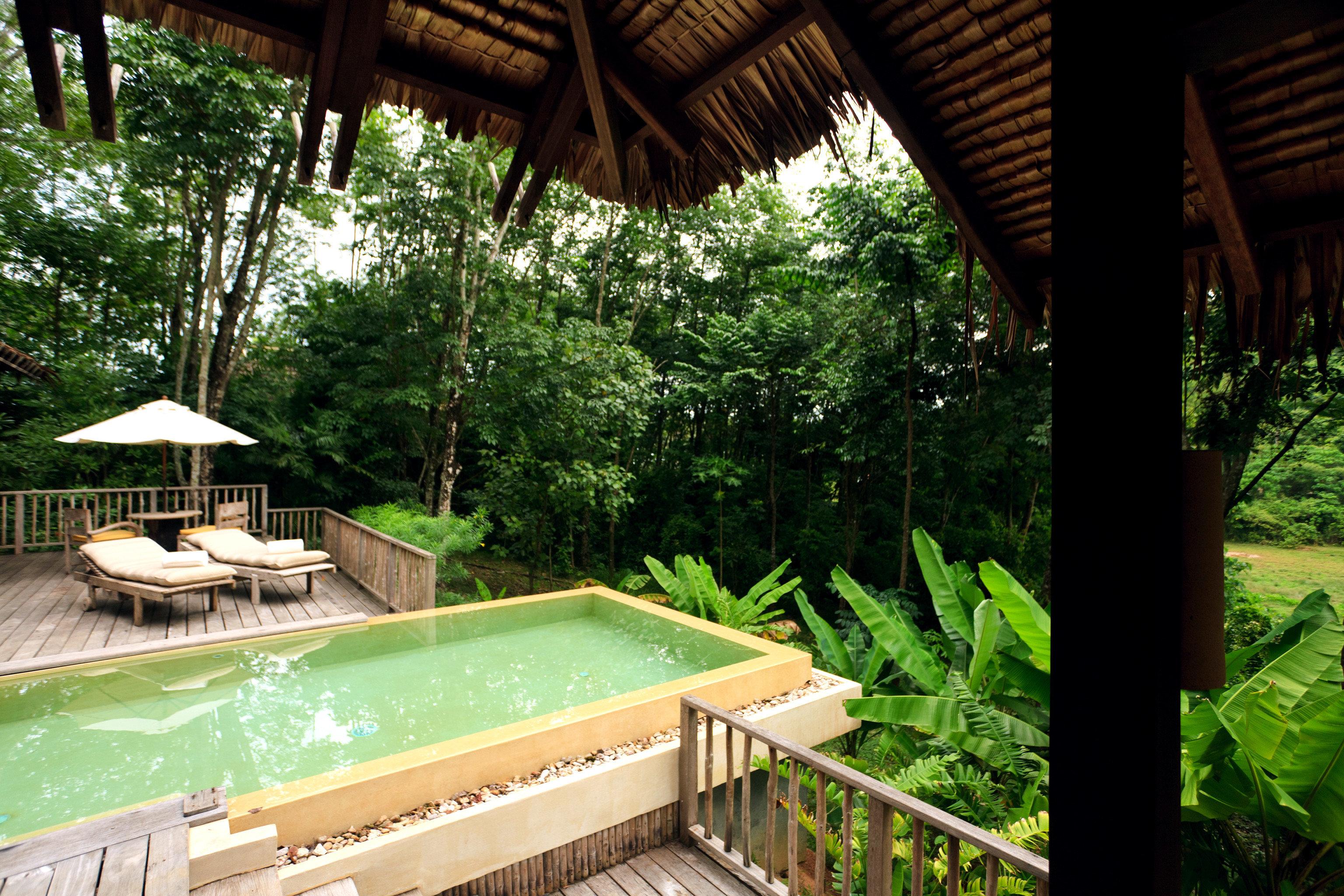Beach Beachfront Hotels Luxury Modern Ocean Phuket Pool Thailand Villa tree outdoor green swimming pool Resort backyard estate Jungle eco hotel Garden outdoor structure cottage wood