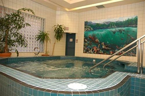 swimming pool jacuzzi mural