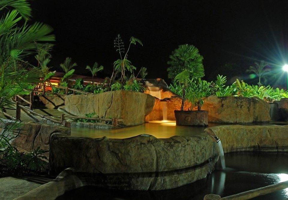 Jungle aquarium screenshot landscape lighting plant