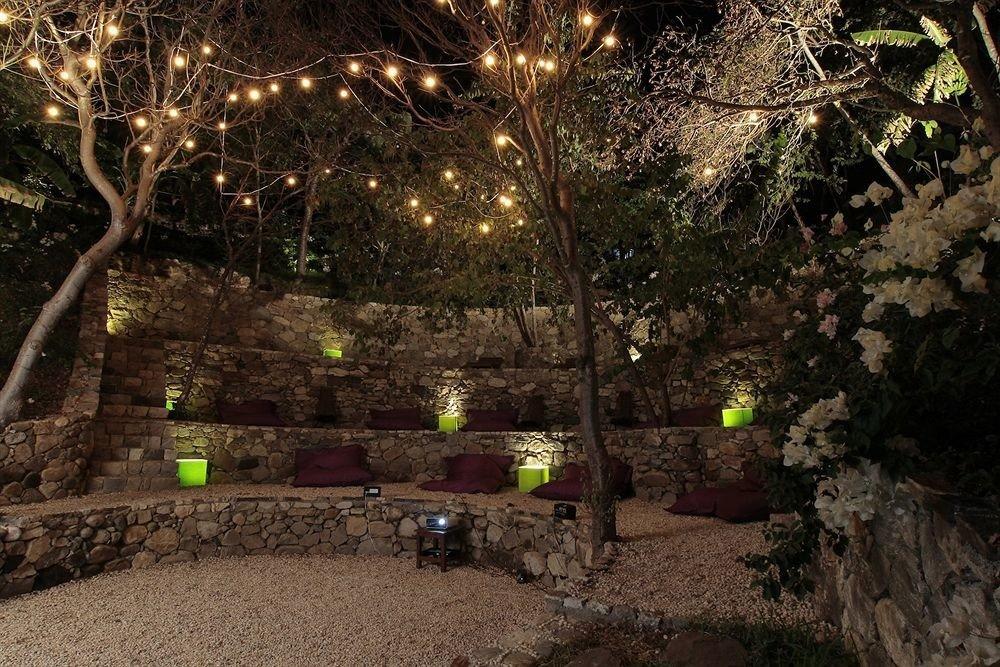 tree outdoor object branch green screenshot light flower landscape lighting Jungle christmas decoration night