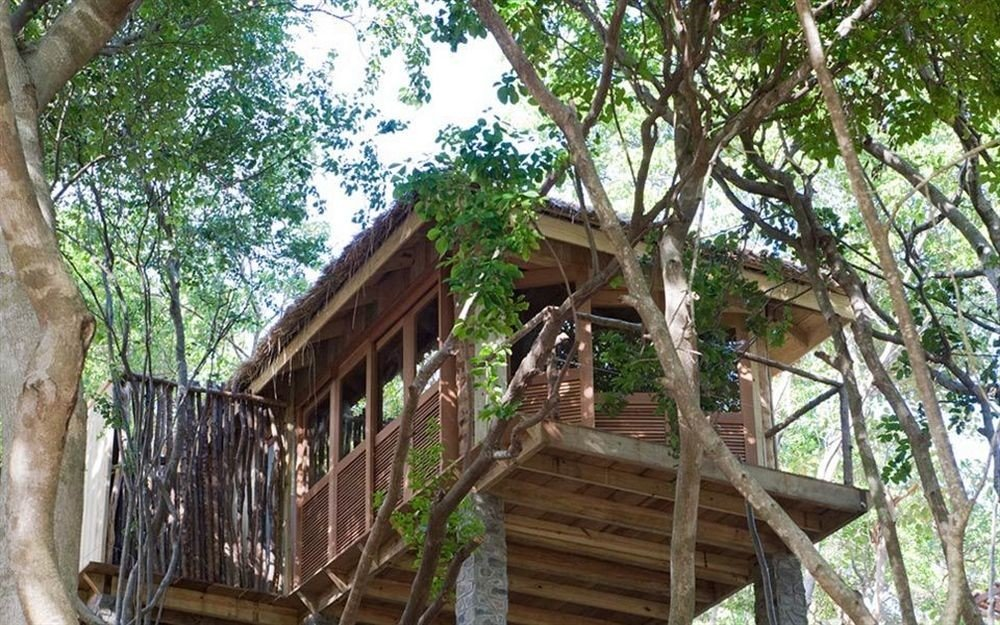 tree property building tree house Jungle outdoor structure cottage hut plant shade