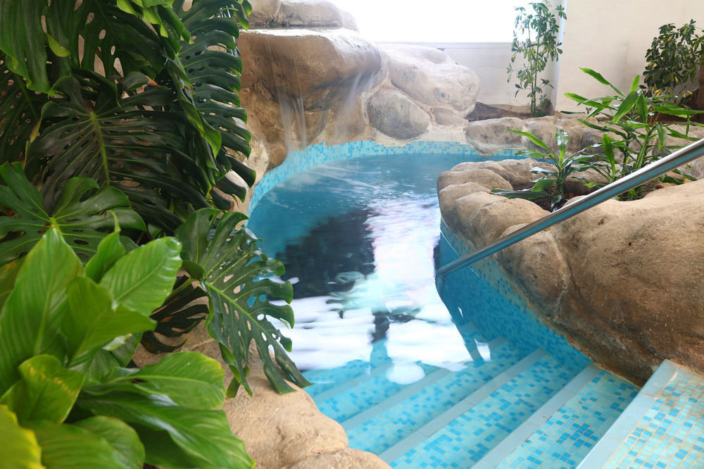 ecosystem swimming pool plant Jungle pond water feature zoo