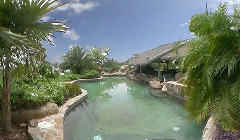 Pool Resort tree palm property swimming pool ecosystem Nature plant waterway arecales Jungle Villa Lagoon shore