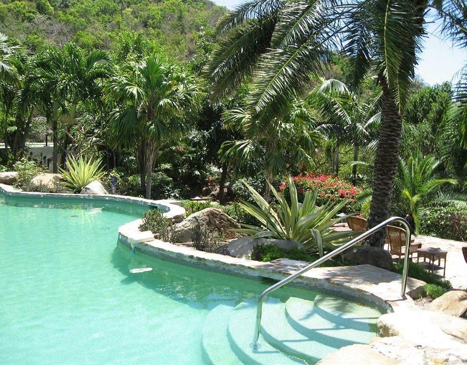 tree swimming pool property Resort plant arecales Villa Pool caribbean eco hotel backyard tropics Water park Jungle Lagoon