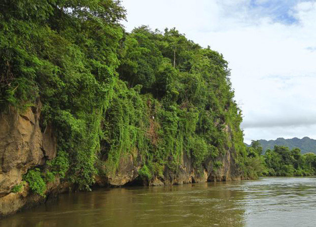 tree water sky River vegetation ecosystem Nature Jungle waterway cliff Lake rainforest terrain surrounded