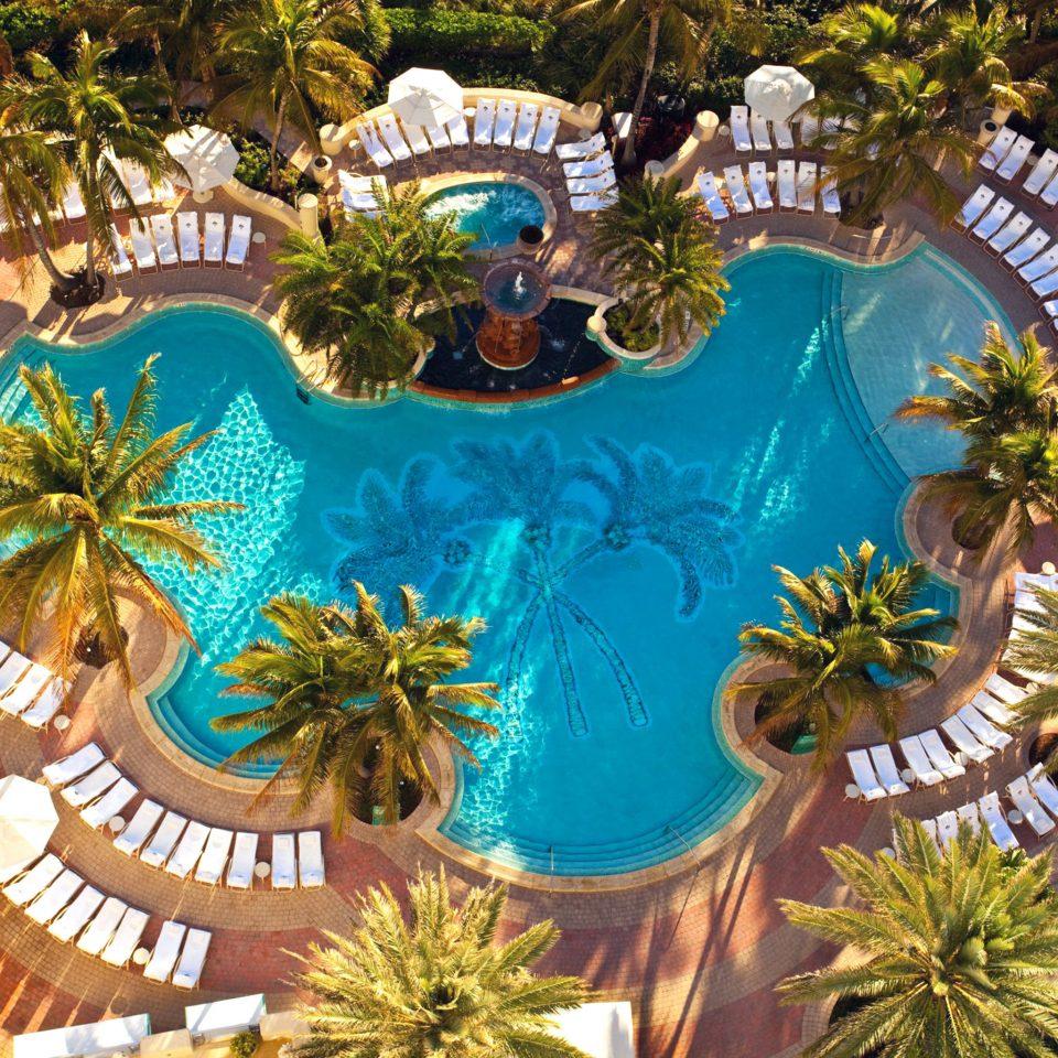 Lounge Luxury Modern Pool tree amusement park plant Resort park Water park Jungle