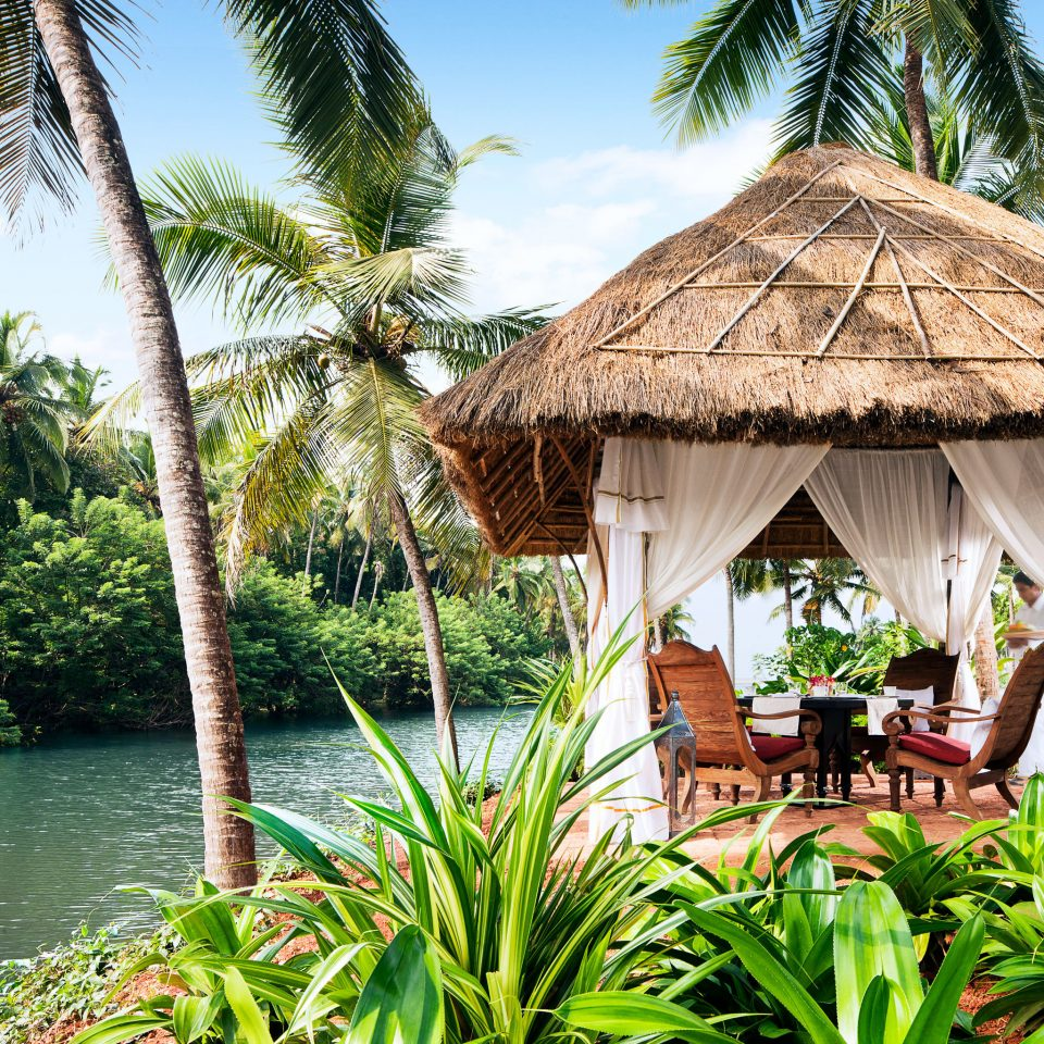 Lounge Scenic views Waterfront tree sky Resort Jungle arecales tropics hut caribbean palm family flower Village rainforest