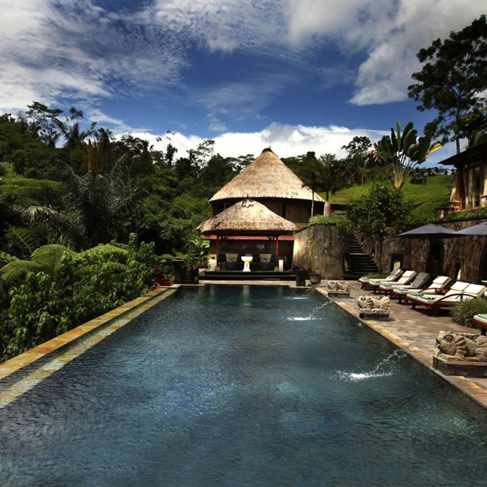 Jungle Luxury Pool tree sky ground Village stone