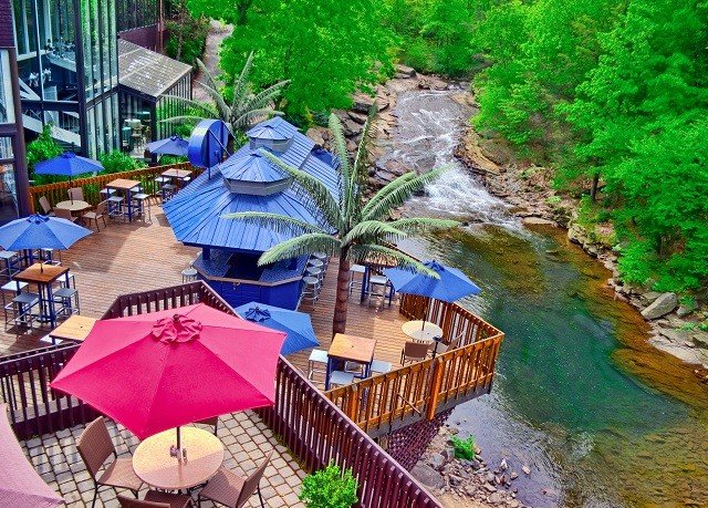umbrella Nature colorful Resort Jungle waterway accessory surrounded