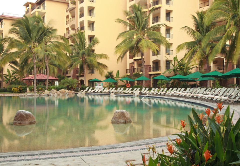 swimming pool property Resort plant palm arecales condominium Jungle lined