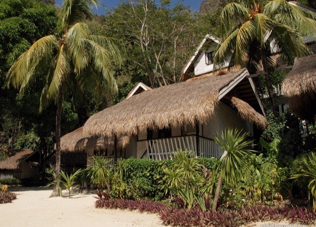 tree plant hut thatching Resort arecales cottage palm eco hotel palm tree Jungle sandy
