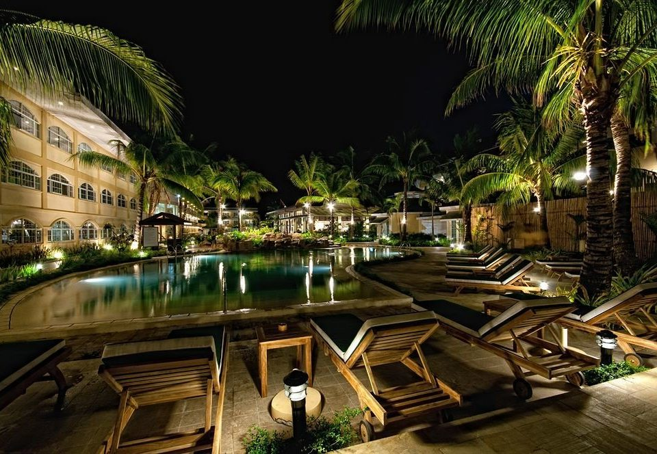 tree night Resort arecales Jungle palm tropics set
