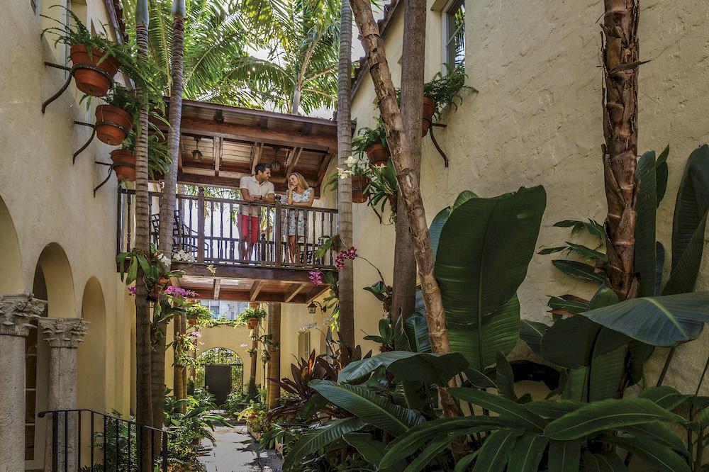 plant house home Jungle flower Resort