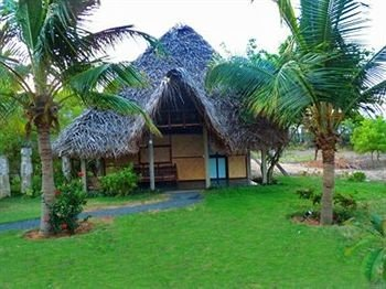 grass tree plant property Resort palm ecosystem green arecales hacienda Villa eco hotel cottage Jungle residential lush