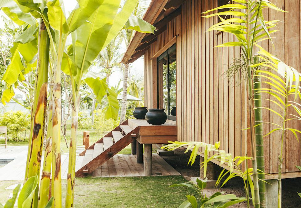 property house backyard Resort home porch cottage Villa outdoor structure Jungle flower