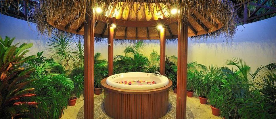 tree Resort Jungle eco hotel plant palm restaurant hacienda backyard Villa