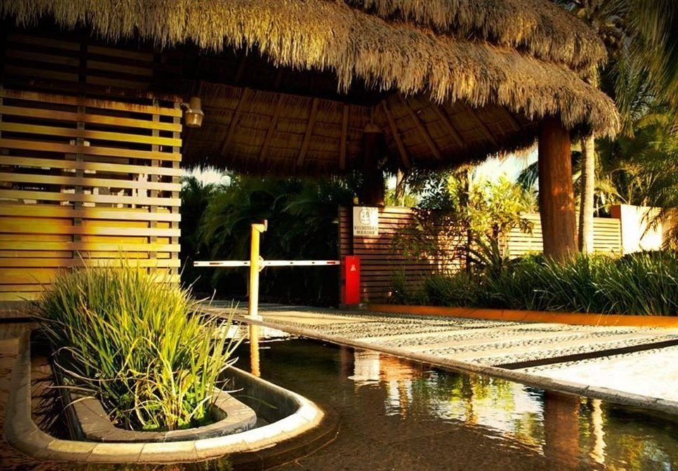Resort swimming pool plant Villa hacienda backyard landscape lighting Jungle