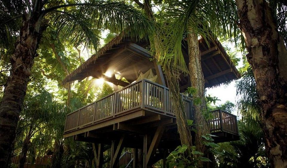 tree building Resort house tree house palm Jungle plant outdoor structure mansion rainforest cottage Villa