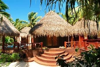 tree Resort property building hut eco hotel Jungle Villa hacienda plant palm