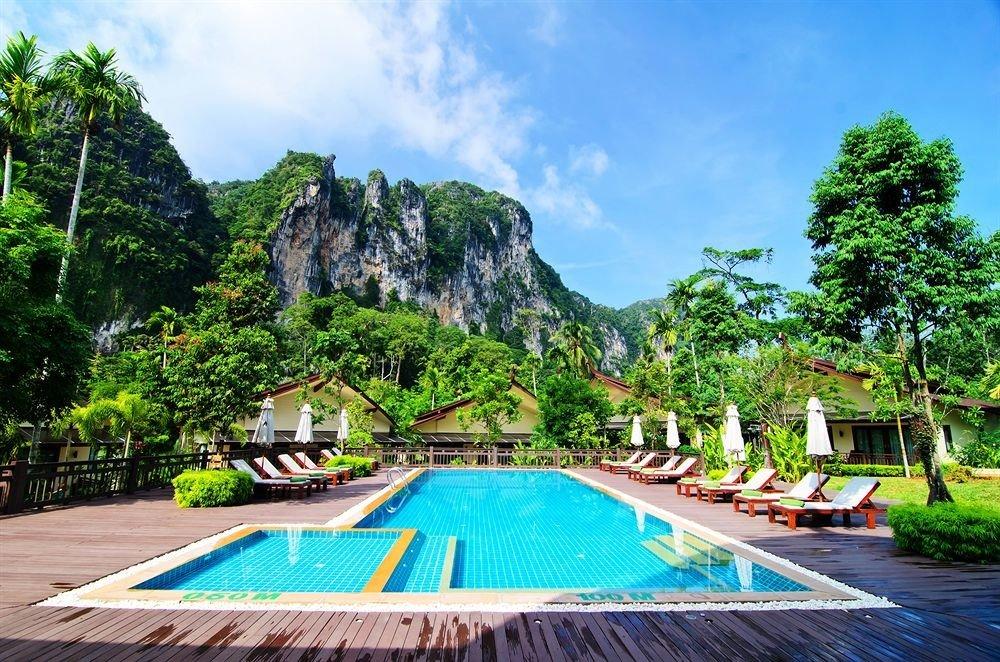 tree swimming pool leisure Resort Villa tropics Jungle caribbean colorful